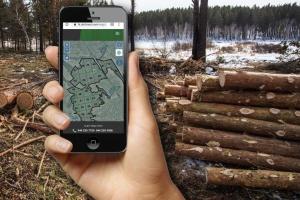До електронного реєстру заготівлі деревини підключили вже 8 областей