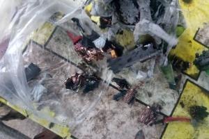 Украинские военные на Донбассе сбили вражеский беспилотник