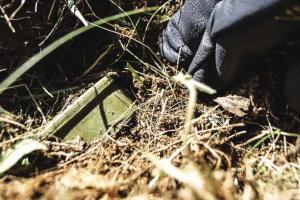 """Сербия отрицает продажу мин Украине и намекает на """"третьи страны"""""""