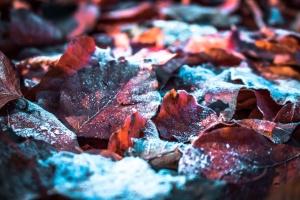 Дощі та мокрий сніг: яким буде останній день жовтня