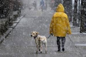 Украинцам прогнозируют сильный ветер, мокрый снег и до 10° мороза