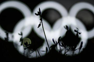Ucrania ha conseguido 19 medallas en los Juegos Olímpicos de Tokio