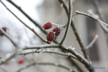 El tiempo invernal llegará a Ucrania con nevadas