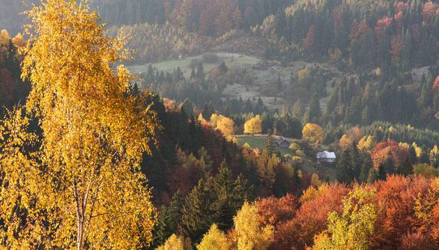 9 листопада: народний календар і астровісник