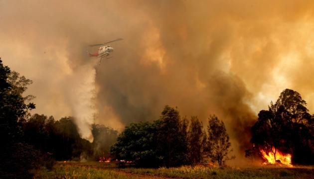Стихийные пожары вокруг Сиднея приобрели непоборних масштабов