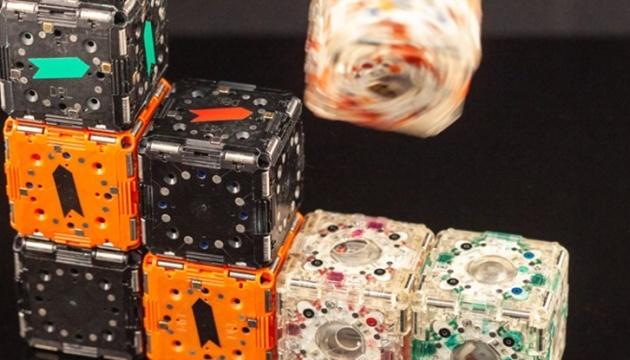 У Штатах створили крихітних роботів із колективним розумом
