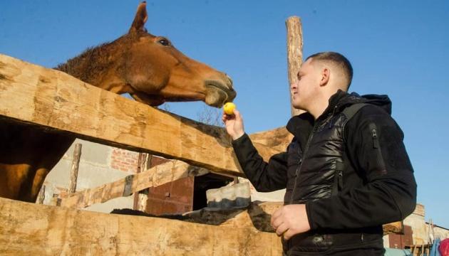 На ферме, где живут переселенные из Авдеевки лошади, прошла толока