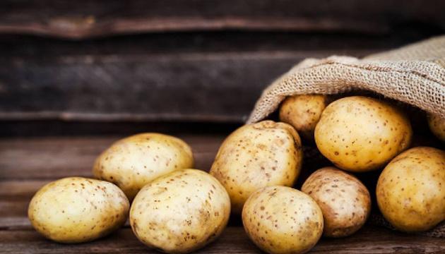 В Україні суттєво знизились ціни на молоду картоплю