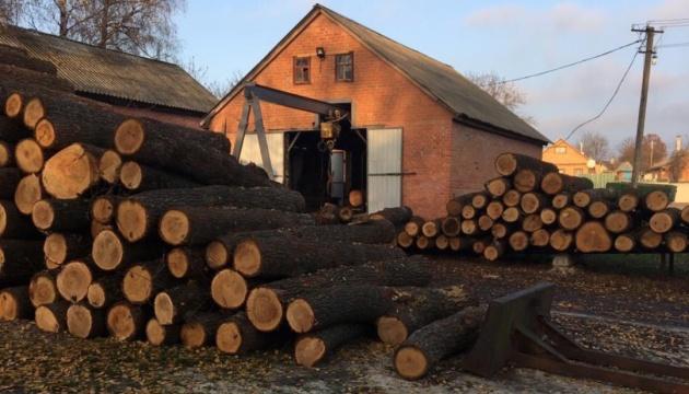 Службовців лісництва на Харківщині підозрюють у розтраті майже на 100 мільйонів