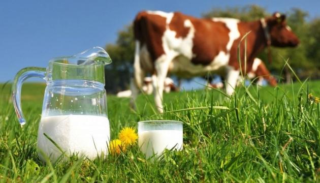 В Барановский громаде будут создавать семейные молочные фермы