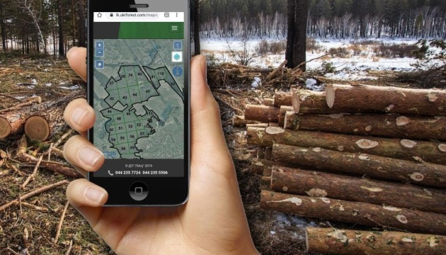 К электронному реестру заготовки древесины подключили уже 8 областей