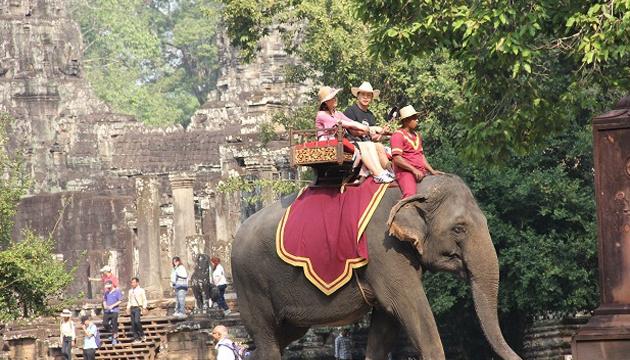У Камбоджі туристам заборонили кататися на слонах