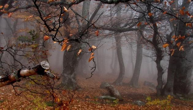 Сьогодні в Україні до 9° тепла, місцями мокрий сніг та дощ