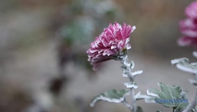 В Україні на вихідні — дощі з мокрим снігом і сильний вітер