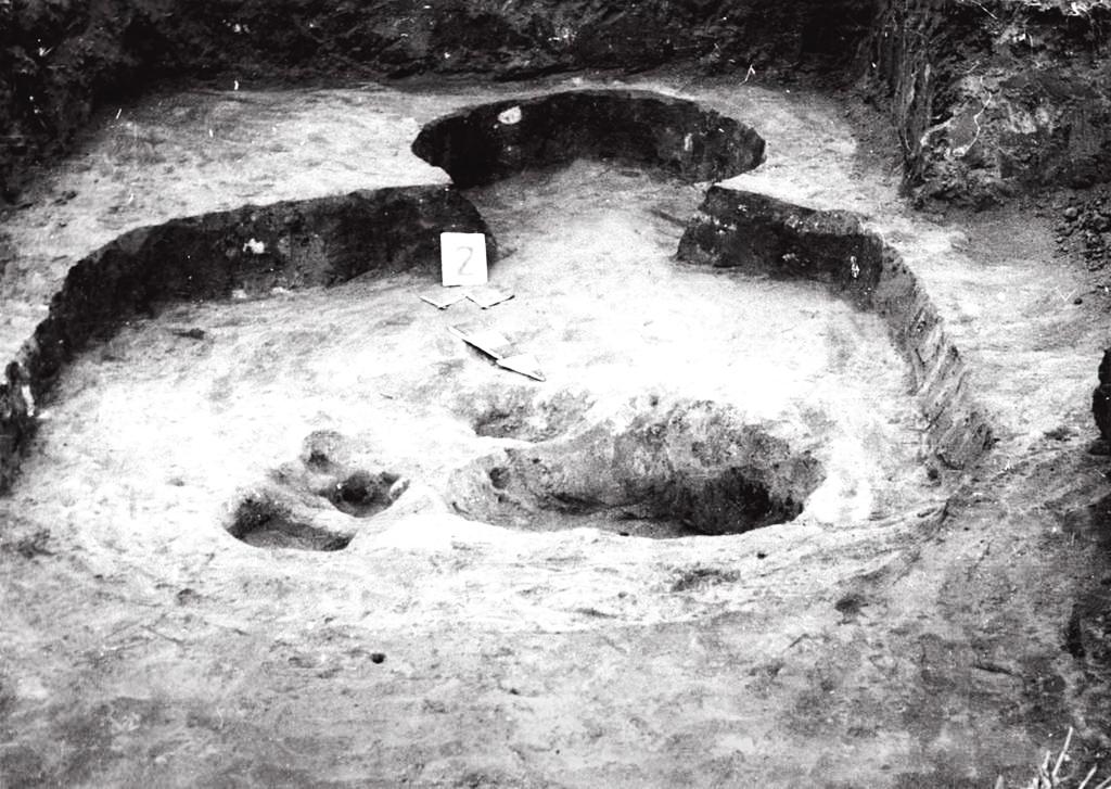святилище у формі тулуба людини, село Загаї Горохівського району Волинської області
