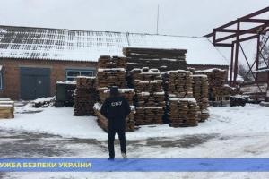Керівники державного лісгоспу провернули оборудку на 5 мільйонів
