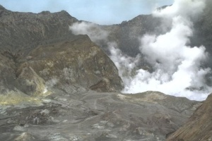 Количество погибших от извержения вулкана в Новой Зеландии возросло до 14