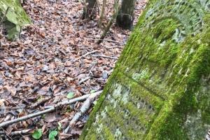 На Тернопольщине для фундамента фермы использовали еврейские надгробия