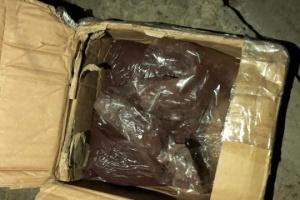 СБУ перекрыла на Киевщине наркотрафик из Южной Америки