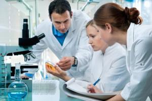 В голове человека обнаружили неизвестный науке орган