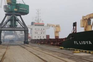 Експертиза свідчить, що чорногорський пісок у херсонському морпорту небезпечний