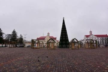 В Чернигове в новогоднем городке запретили использовать лошадей и ослов