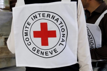 Red Cross sends 100 tonnes of humanitarian aid to occupied Donbas