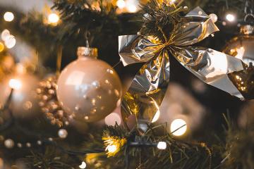 Choisir le plus beau sapin de Noël ukrainien