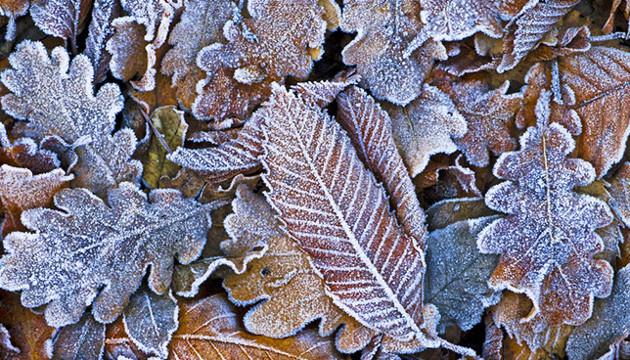 3 грудня: народний календар і астровісник