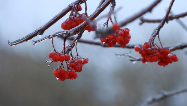 7 грудня: народний календар і астровісник