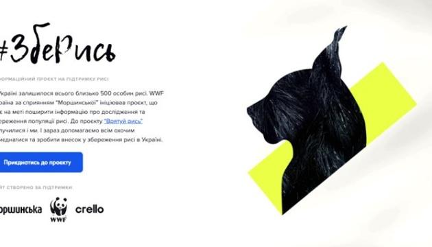 #ЗбеРись та поділись: Crello створив постери на підтримку програми «Врятуємо рись!»