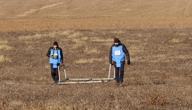 Over 250 hectares of land demined in Donbas this year