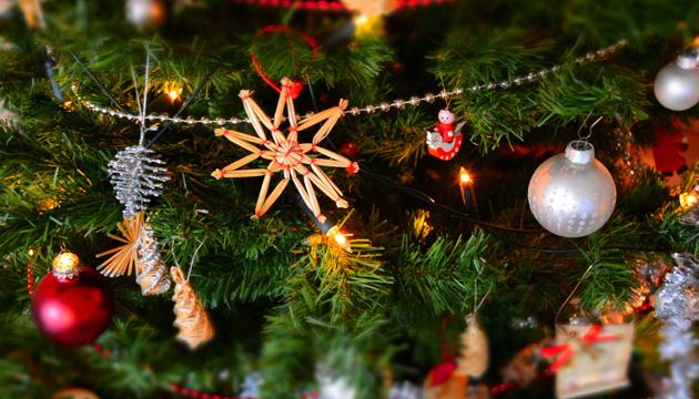 Фестиваль різдвяних ялинок відкрився в Японії за участі української красуні