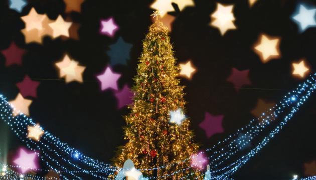 Во Франции разрешили продажу рождественских елок как «предметов первой необходимости»