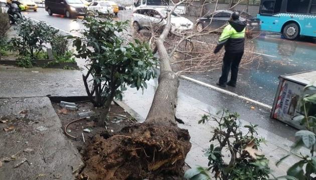 Зірвані дахи й повалені дерева: Стамбулом прокотився ураган