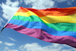 Международное сообщество обеспокоена дискриминацией ЛГБТ в Украине