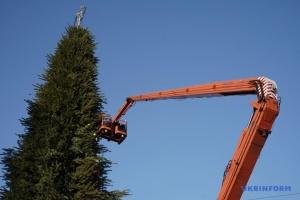 キーウ市内の新年ツリー 解体作業開始