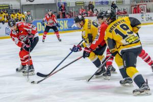 УХЛ: «Донбас» сенсаційно програв «Білому Барсу»