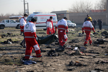 Theory of terrorist attack in Ukrainian plane crash ruled out - embassy