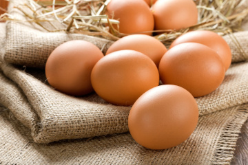 Egg production in Ukraine grows by 3.4% in 2019