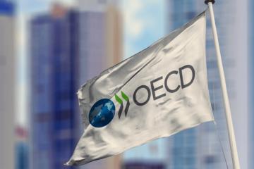 Ukraine approves draft renewal of memorandum with OECD