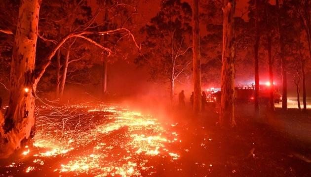 Incendies en Australie : le gouvernement ukrainien prêt à apporter son aide