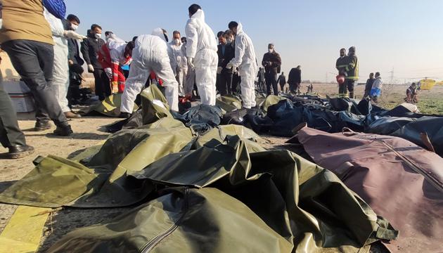 В Іран їдуть шведські спеціалісти - допомагати родичам загиблих у катастрофі літака МАУ