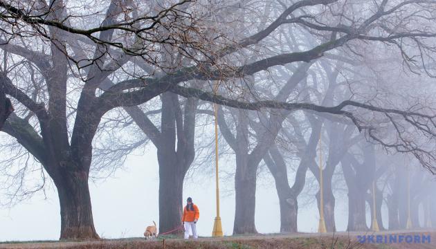 Синоптики прогнозують в Україні до +12° і туман