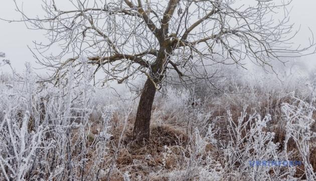 Когда и где ждать снег: синоптики дали прогноз до конца недели