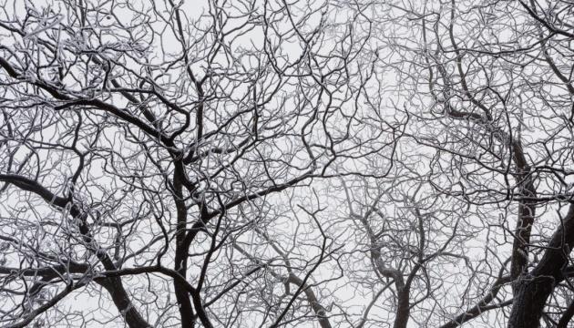 В Украину идет значительное похолодание: где будет много снега и сильные морозы