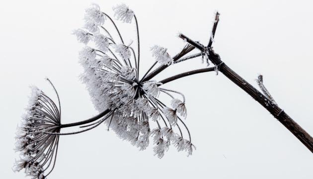 Температурні гойдалки тривають: синоптики прогнозують від 6° морозу до 3° тепла