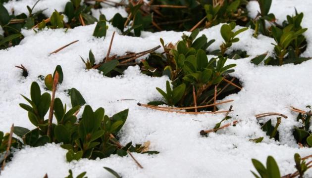 На кінець тижня прогнозують від -8° до +12°, місцями сніг із хуртовинами