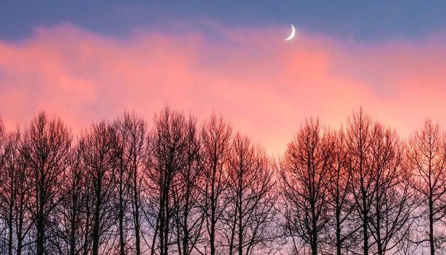 30 января: народный календарь и астровестник
