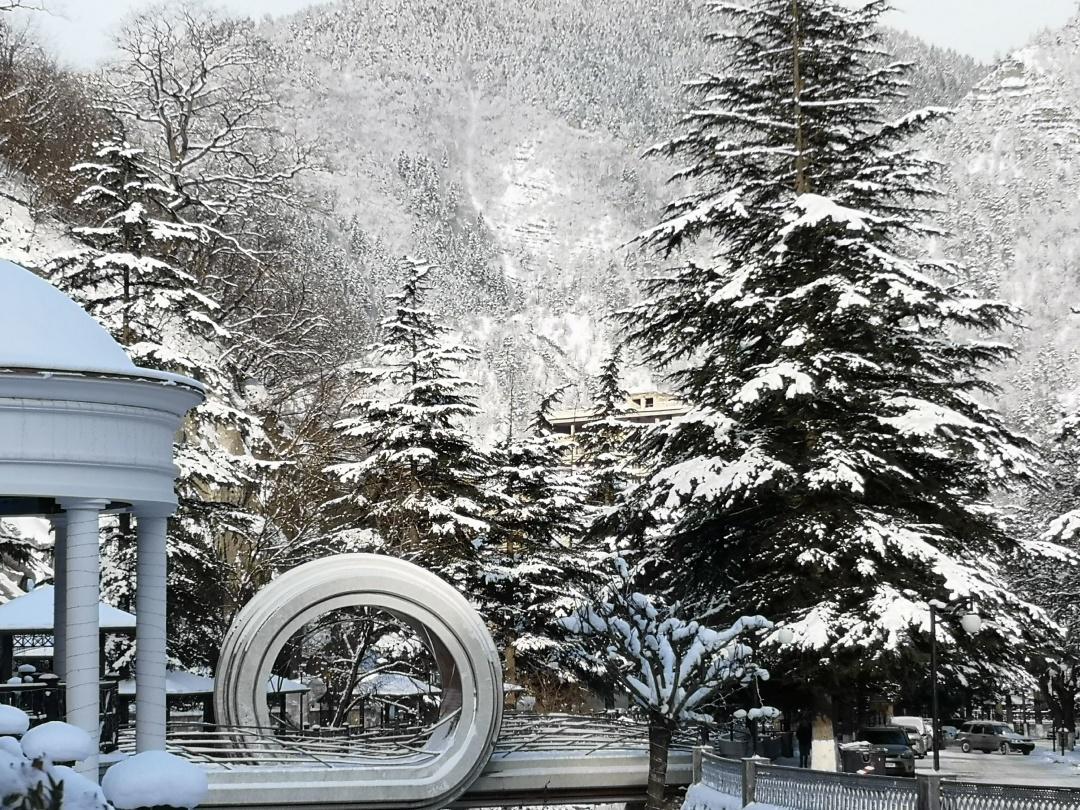 Місцевість у Боржомському районі нагадує українські Карпати